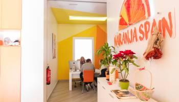 Inmobiliaria Guardamar del Segura, Naranja Spain