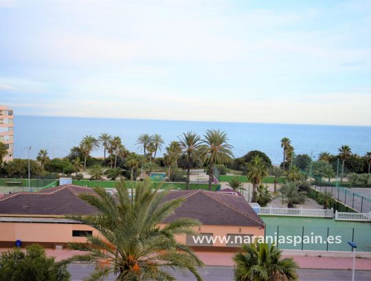 Apartment - Vacation Rentals - Cabo Cervera - Cabo Cervera
