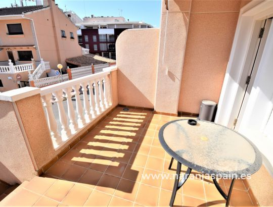 Apartment - Vacation Rentals - Guardamar del Segura - Park Reina Sofia