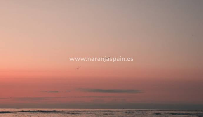 ​Guardamar a gem for photography in Costa Blanca