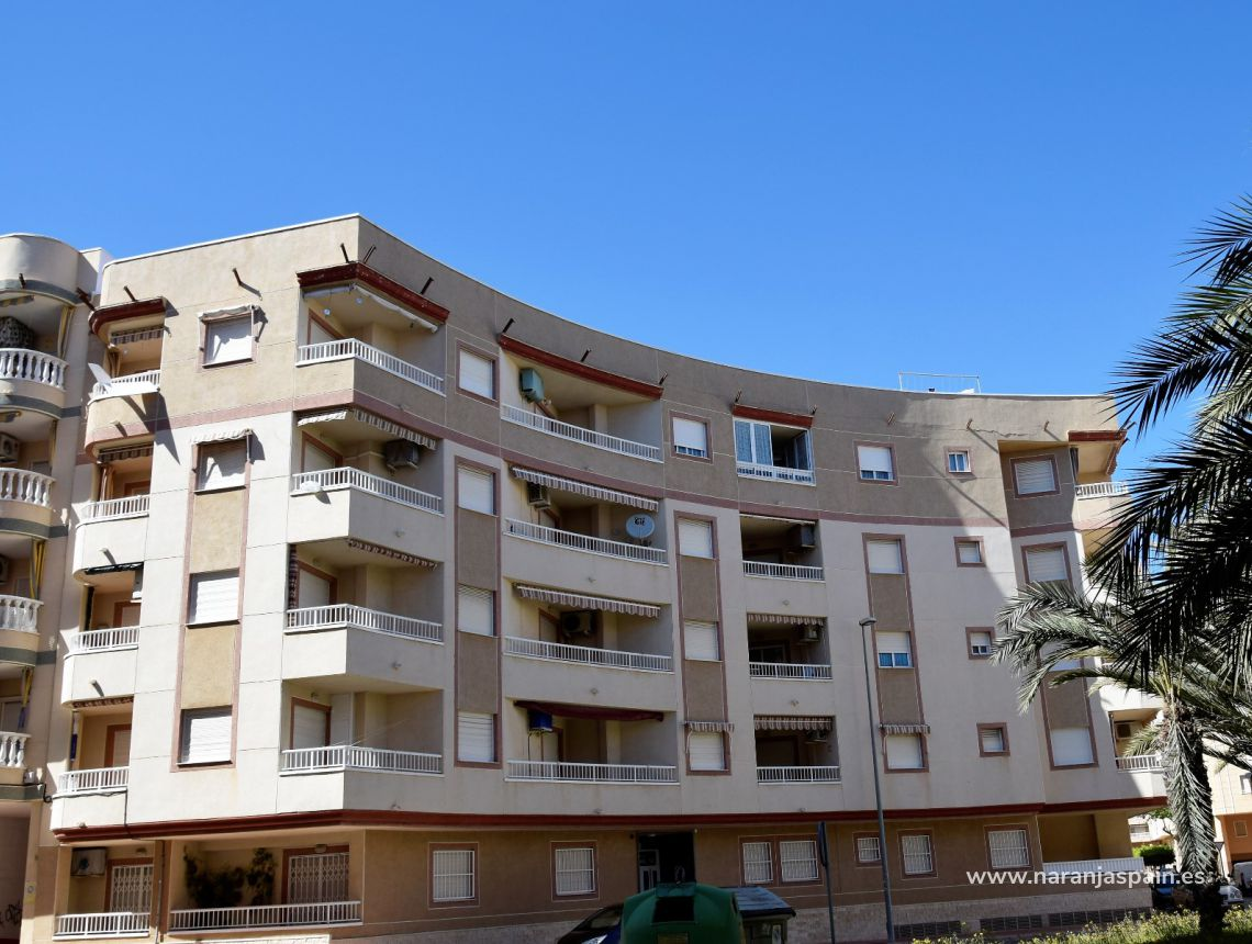 Apartment - Vacation Rentals - Guardamar del Segura - South Park